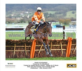 12:40 JCB Triumph Trial Juvenile Hurdle Race photos