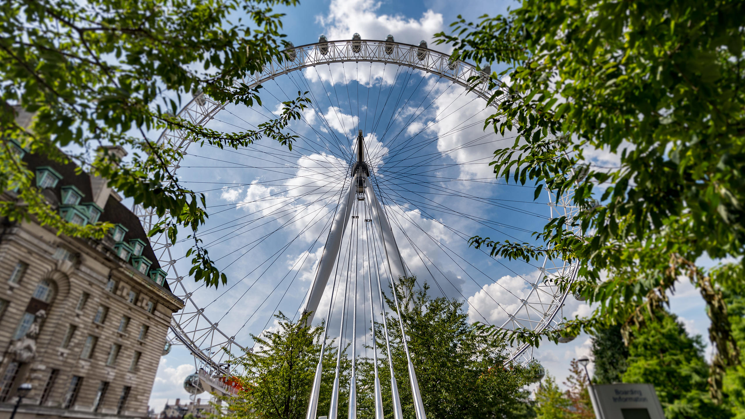 London Eye Through Trees
