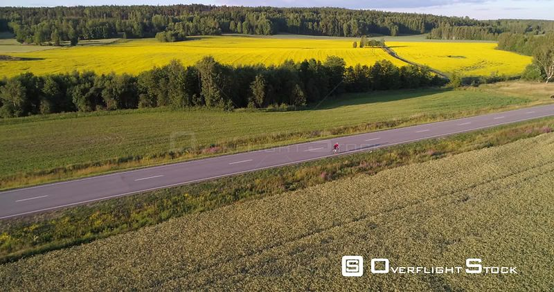 Man biking on the countryside, C4K aerial view above a biker driving on a road, between wheat fields, on a sunny summer evening, in Uusimaa, Finland