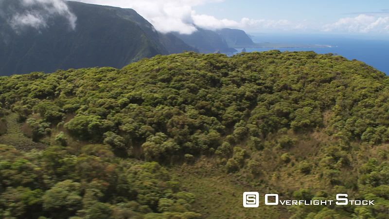 Over forested cliff top to long view of Molokai coastline.