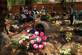 Floral tributes (both real and paper flowers) next to grave in cemetery for Todos Santos festival, Sipe Sipe, Cochabamba Department, Bolivia