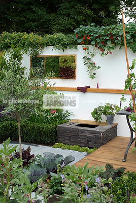 Allotment, Contemporary garden, garden designer, Mini pond, Mini potager, Mini Vegetable garden, Small garden, Urban garden, Vegetable patch, Vegetable plot, Very small pond, Foliage wall, Green wall, Vegetation wall, Wall decoration