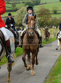 Hunt Followers near Lambing's - The Cottesmore Hunt at Somerby, 2-11-13