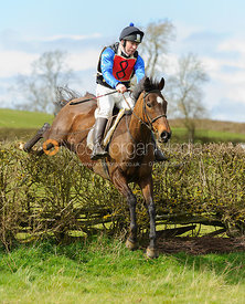 Charlie Ward jumping the last hedge - Harborough Ride 2014