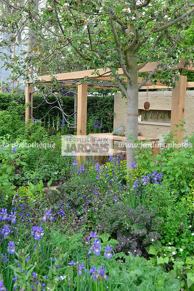 La phototh que les plus beaux jardins petit jardin for Massif jardin contemporain