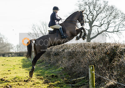The Belvoir Hunt at Springfield Farm 24/2 photos