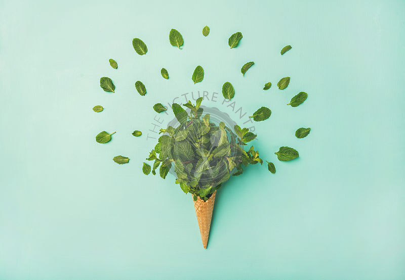 Waffle cone with fresh mint over blue background, top view