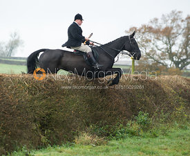 Quorn followers jumping a big hedge