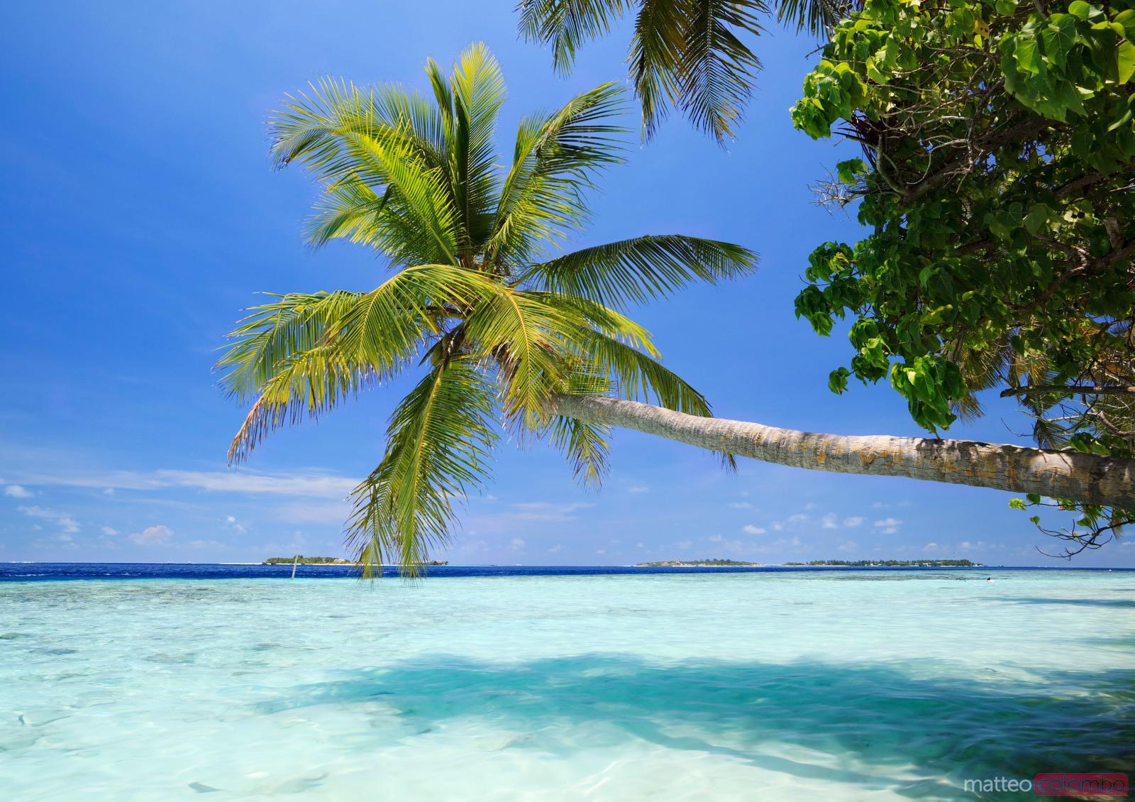Amazon Private Island Hawaii
