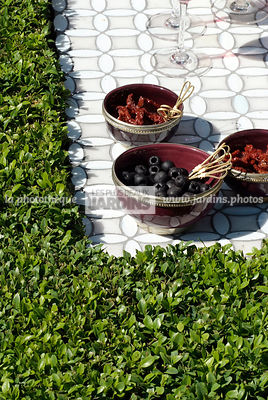 Bol avec olives. Buxus sempervirens (buis), arbuste persistant. Paysagiste : Raine Clare-Wills, Hampton Court, Angleterre