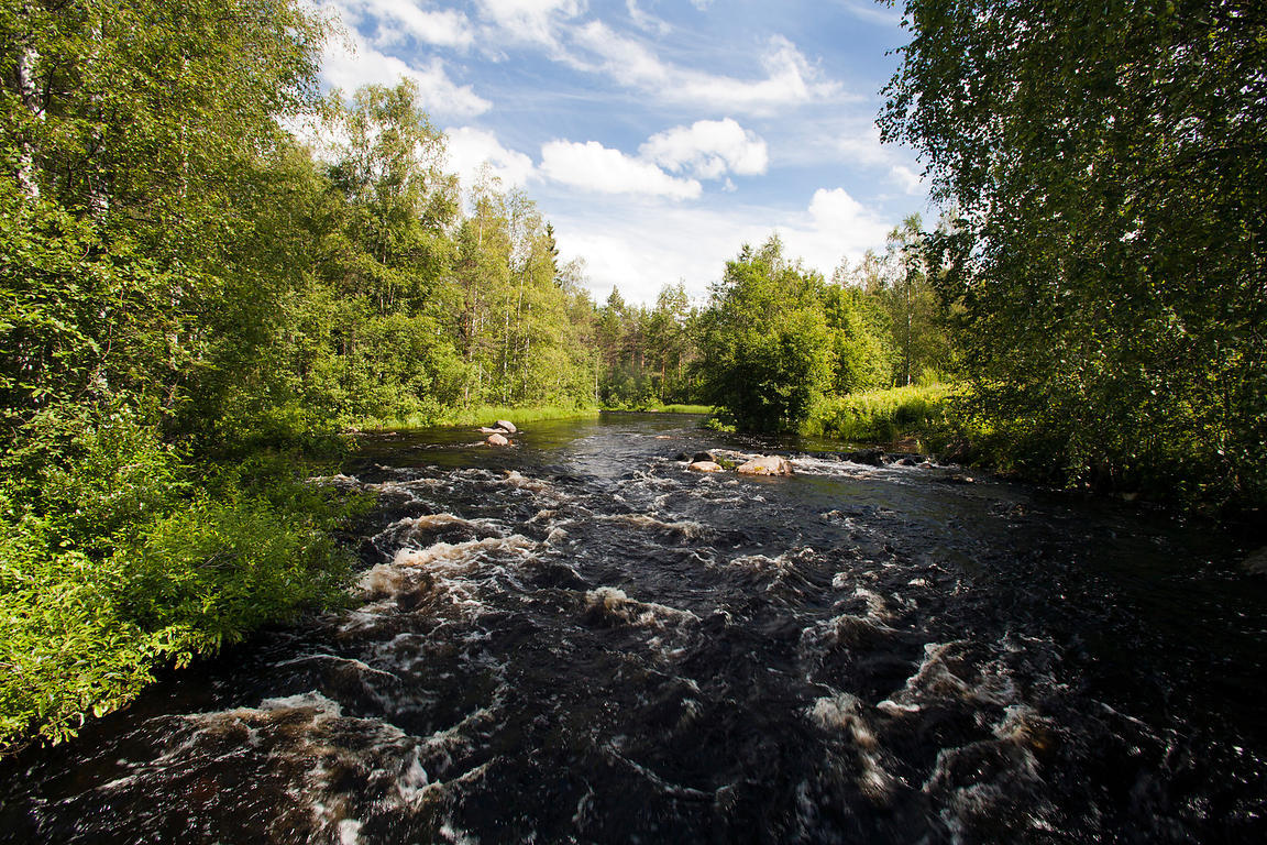 Kalliokoski Rapids in the River Lestijoki