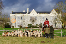 Master and Huntsman Andrew Osborne MFH and hounds at Belton 24/12