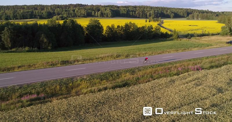 Man biking on the countryside, C4K aerial view over a biker driving on a road, between wheat fields, on a sunny summer evening, in Uusimaa, Finland