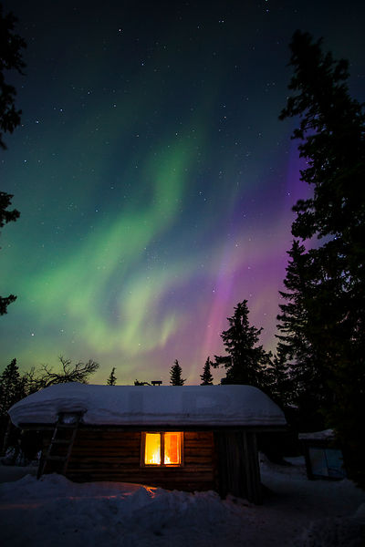 Northern Lights above the Riisi open wilderness cabin in Riisitunturi National Park