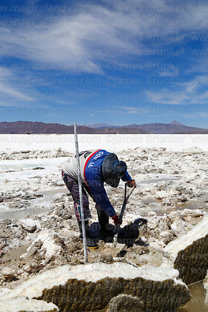 Salt worker digging out salt blocks, Salar de Coipasa, Oruro Department, Bolivia