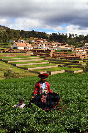 Quechua woman wearing traditional dress in potato field, village and terraces of Inca site in background, Chinchero, near Cusco, Peru