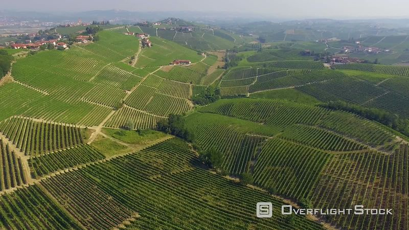 Drone Video in Vineyards in the Piedmont region of Italy