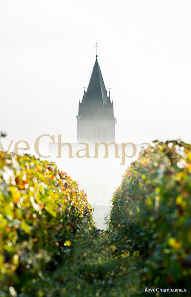LA CHAMPAGNE photos