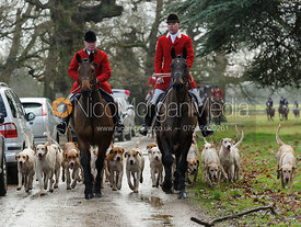 The Fitzwilliam Hunt hounds arriving at the meet with George Adams and George Whittaker