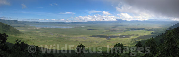 Panoramic shot of Ngorongoro Crater showing Lake Magadi, Ngorongoro Crater, Tanzania; Landscape