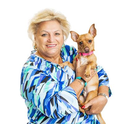 Happy Senior Woman With Chihuahua Dog