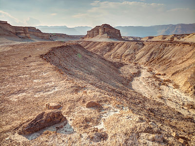 Dried stream, Negev desert, Israel