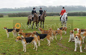Belvoir foxhounds at the meet - The Belvoir Hunt at Sheepwash 31/12