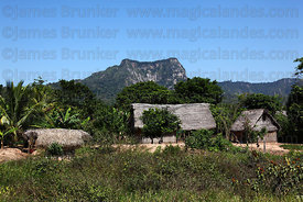 Typical bamboo and palm thatch houses in countryside near Rurrenabaque , Beni , Bolivia