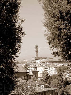 Florence View of the City