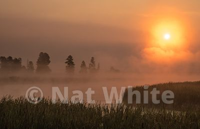 Wild_life_refuge-Montana_sunrise-RMSP_nat_wild_refuge_sunrise2017-514-August_07_2017