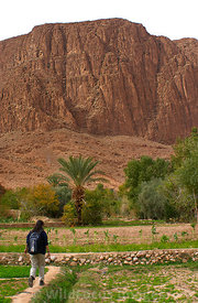 AJ1129C-101-Todra_Gorge-North_4_hr_loop-Palmeraie-m
