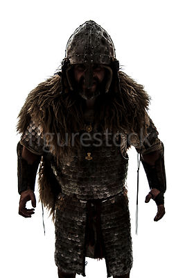 A semi-silhouette of a wealthy Viking in armour and fur – shot from eye level.