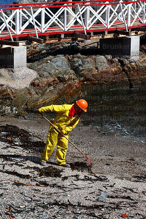 Man cleaning up seaweed on beach next to historic pier, Ilo, Peru