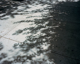 Sidewalk outside where Amy was meant to move to, Brooklyn, United States