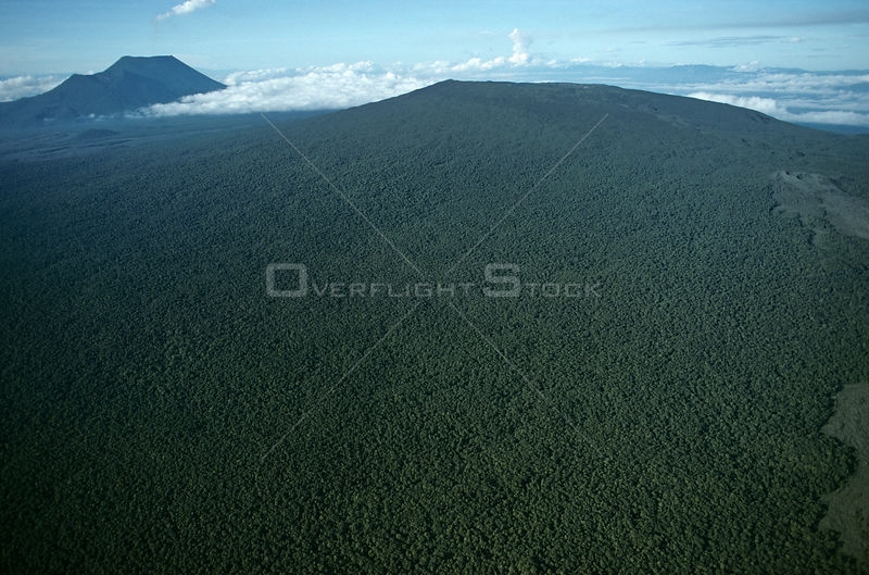 Aerial view of tropical rainforest established on old lava flow of Nyiragongo volcano, Virunga NP, Democratic Republic of Congo (formerly Zaire) Central Africa