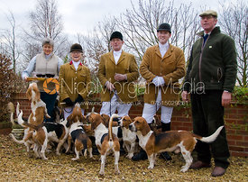 The Westerby Bassets at Hill Top Farm