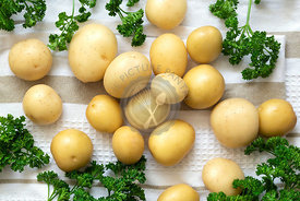 Whole potatoes with sprigs of parsley on a cloth.