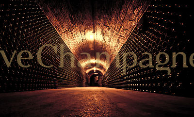 CHAMPAGNE CELLARS photos