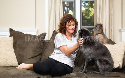 Pet Sitter on Couch Petting Dogs