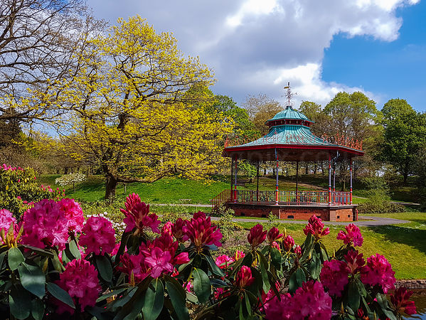 Bandstand Blooms