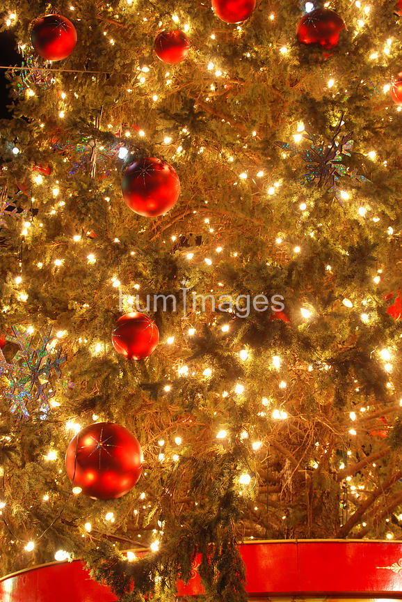 Close up of Christmas tree ornaments
