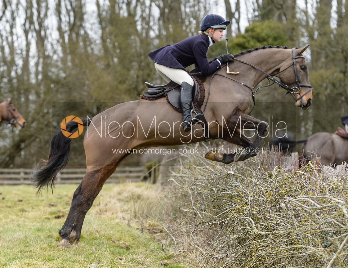 Amelia Leeming jumping a hedge at Orton Park