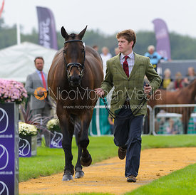 Angus Smales and BALLYVOONEY - The first vets inspection (trot up),  Land Rover Burghley Horse Trials, 3rd September 2014.
