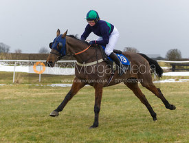 Walter's Laddie (Miss F. Conway) - The Belvoir at Garthorpe 30th March 2013.