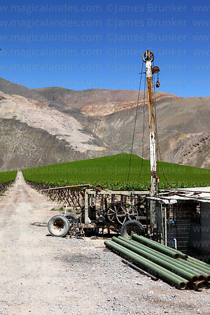Farm machinery and vineyards and farm building contrasting with desert hillside, Copiapó Valley, Region III, Chile