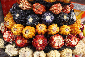 Close up of varieties of maize for sale in a shop in Cusco, Peru