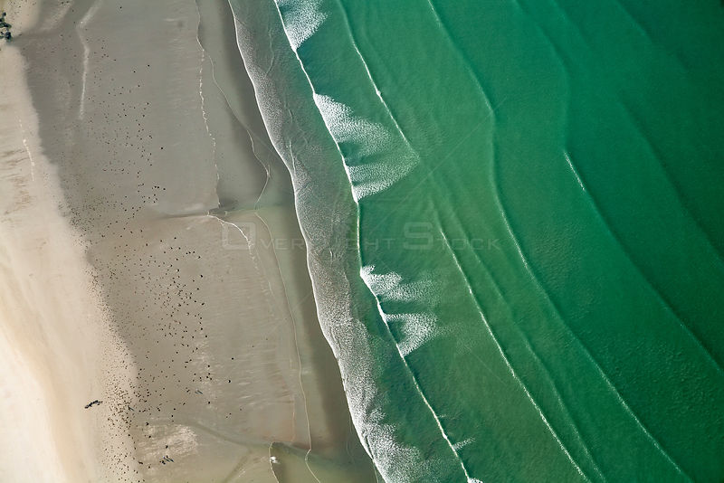Aerial view of Saint-Michel-en-Grève beach. The green color of water is due to algae (Ulva armoricana) growth caused by nitrogen pollution from agriculture.