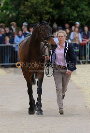 - First Horse Inspection, Mitsubishi Motors Badminton Horse Trials 2014