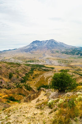 Mt St Helens-seen from the National Volcanic Monument- Vertical