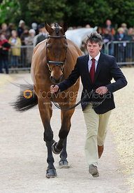 Jim Newsam and MAGENNIS - First Horse Inspection, Mitsubishi Motors Badminton Horse Trials 2014